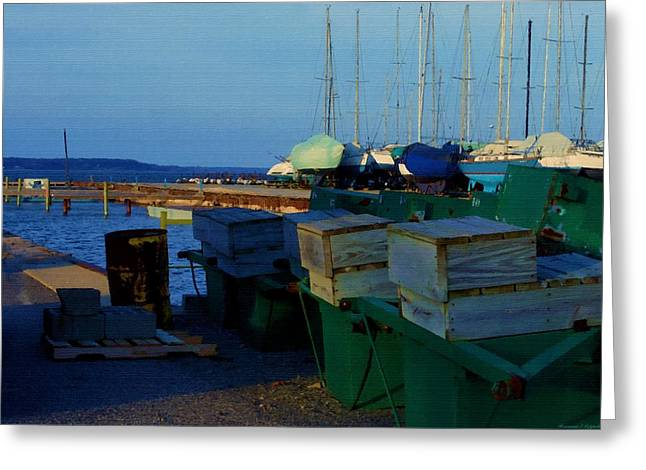 All Packed And Ready To Go...lakeshore Loading Docks And Marina Greeting Card by Rosemarie E Seppala