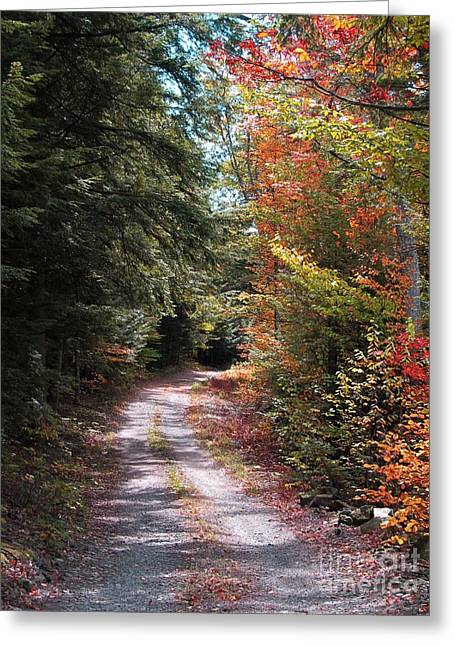 All Roads Lead Here Greeting Card by Linda Marcille
