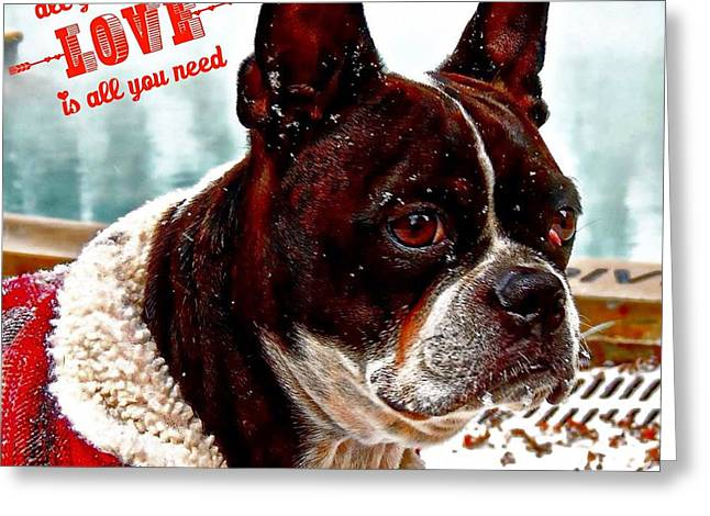 All You Need Is Love Greeting Card by Carrie OBrien Sibley