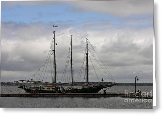 Alliance Schooner Greeting Card by Teresa Mucha