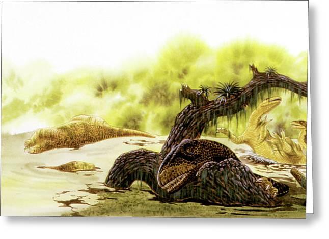 Allosaurus Dinosaurs Drowning Greeting Card by Deagostini/uig