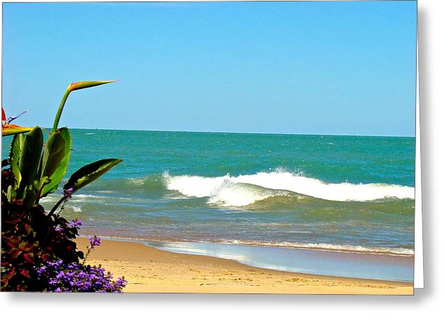Allow Yourself To Imagine At A Beach Greeting Card