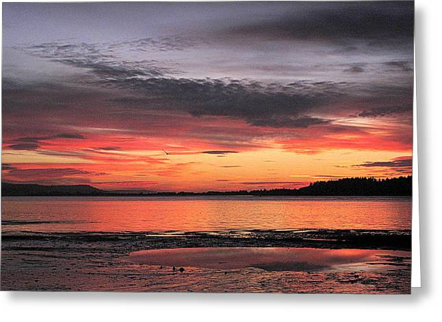 Alluring Sunset Greeting Card
