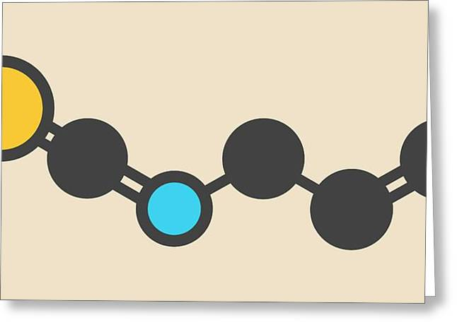 Allyl Isothiocyanate Mustard Molecule Greeting Card
