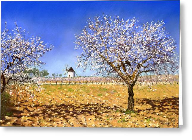 Almendros Greeting Card by Margaret Merry
