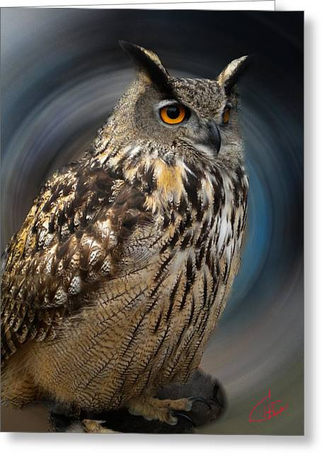 Greeting Card featuring the photograph Almeria Wise Owl Living In Spain  by Colette V Hera  Guggenheim