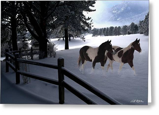 Almost Christmas Greeting Card by Bill Stephens