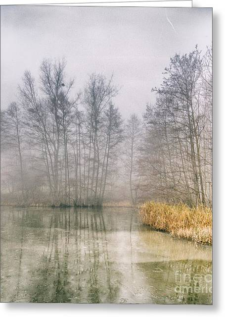Greeting Card featuring the photograph Almost Frozen Almost Winter by Maciej Markiewicz
