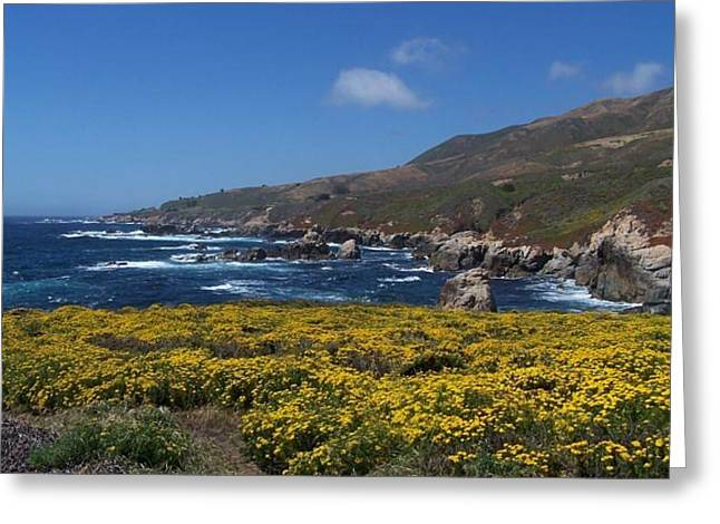 Greeting Card featuring the photograph Almost In Monterey by Christine Drake