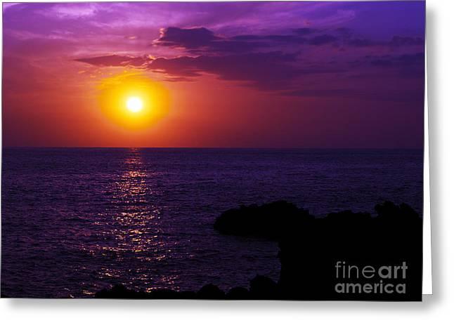 Aloha I Greeting Card by Patricia Griffin Brett