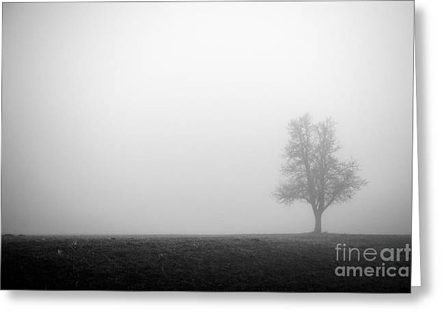 Alone In The Fog - Bw Greeting Card by Hannes Cmarits