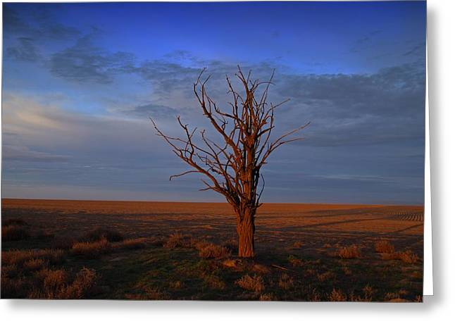 Greeting Card featuring the photograph Alone Yet Not Alone by Lynn Hopwood