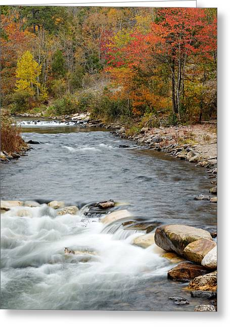 Along The Banks Of The Mountain Fork River Greeting Card