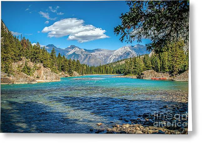 Along The Bow River Greeting Card by Bob and Nancy Kendrick