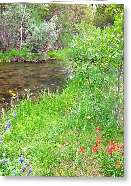 Along The Creek Greeting Card by Marilyn Diaz