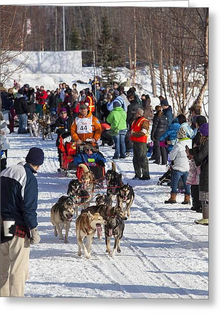 Along The Iditarod Route In Anchorage Greeting Card by Tim Grams