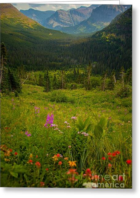 Along The Path To Iceburg Lake 17 Greeting Card by Natural Focal Point Photography
