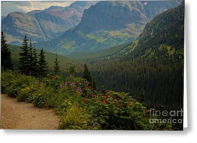 Along The Path To Iceburg Lake 21 Greeting Card by Natural Focal Point Photography