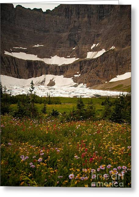 Along The Path To Iceburg Lake 9 Greeting Card