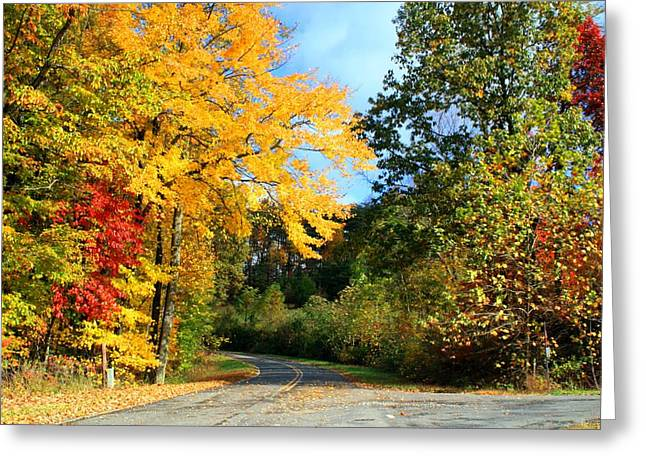 Greeting Card featuring the photograph Along The Road 2 by Kathryn Meyer