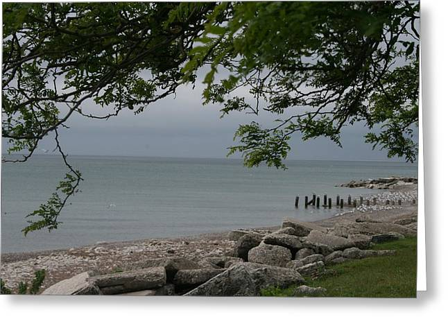 Greeting Card featuring the photograph Along The Shore by Kay Novy