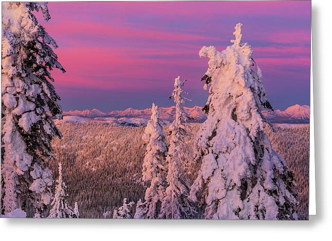 Alpenglow Light Over The Whitefish Greeting Card by Chuck Haney