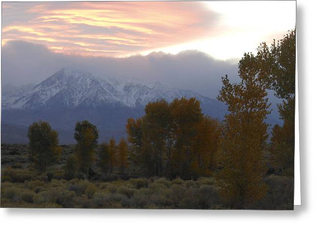 Alpenglow Over Mt Tom Greeting Card by Don Kreuter