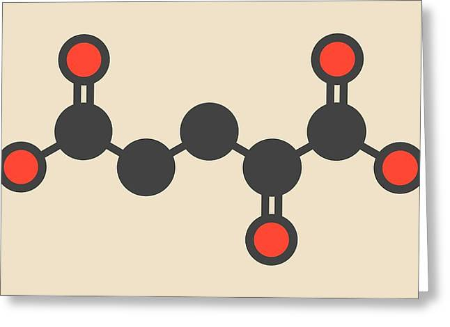Alpha-ketoglutaric Acid Molecule Greeting Card by Molekuul