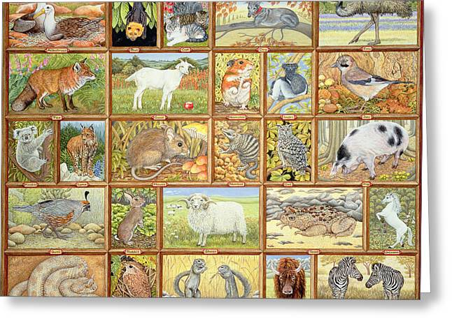 Alphabetical Animals Greeting Card