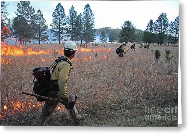 Alpine Hotshots Ignite Norbeck Prescribed Fire Greeting Card