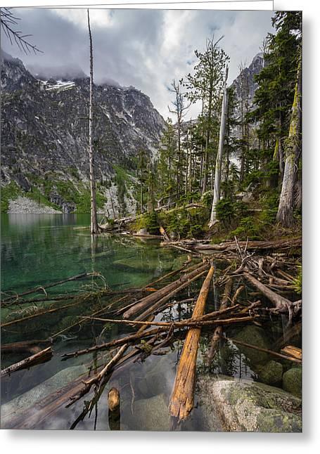 Alpine Lakes Logjam Greeting Card by Mike Reid