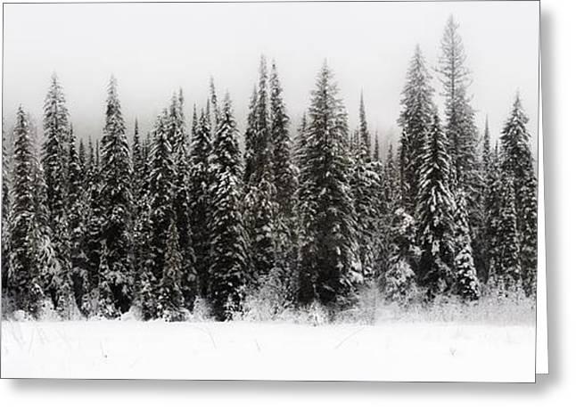 Winter Scene // Whitefish, Montana  Greeting Card
