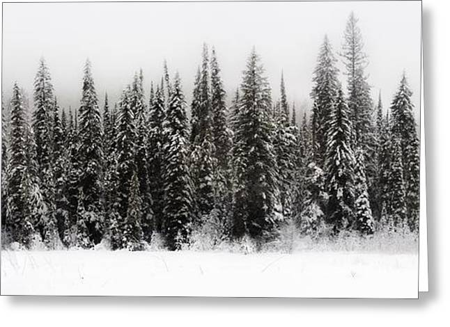 Winter Scene // Whitefish, Montana  Greeting Card