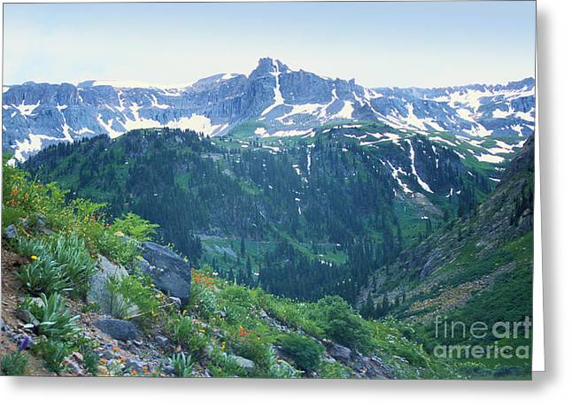 Alpine Vista Near Durango Greeting Card