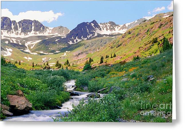 Alpine Vista With Wildflowers Greeting Card