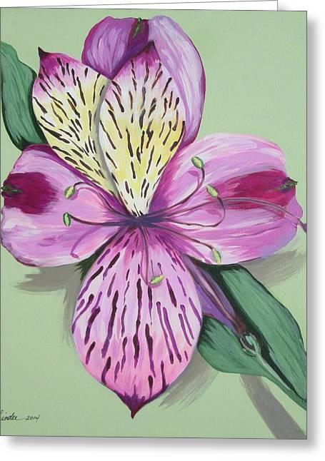 Alstroemeria No.1 Greeting Card