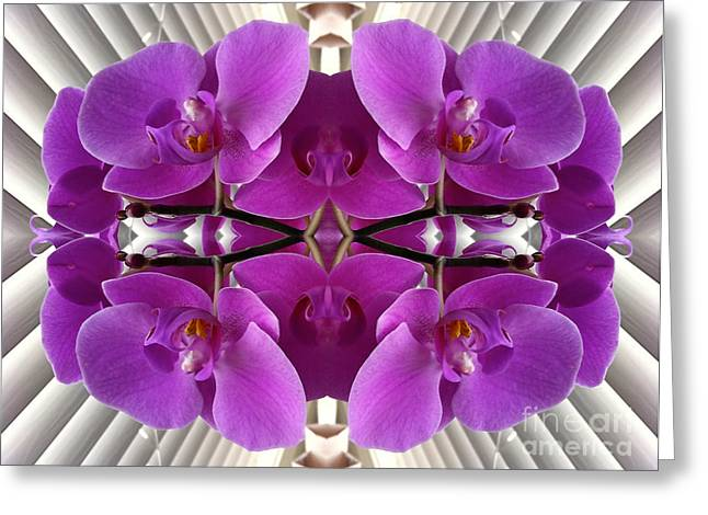 Orchids In The Window - Enhanced Greeting Card