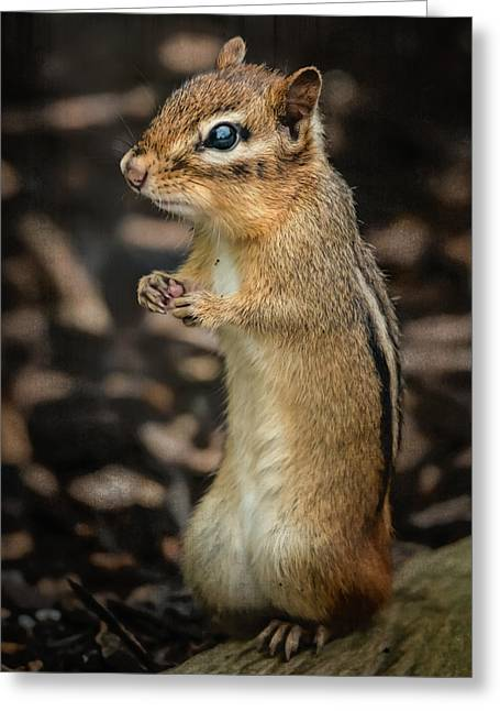 Greeting Card featuring the photograph Alvin by Linda Karlin