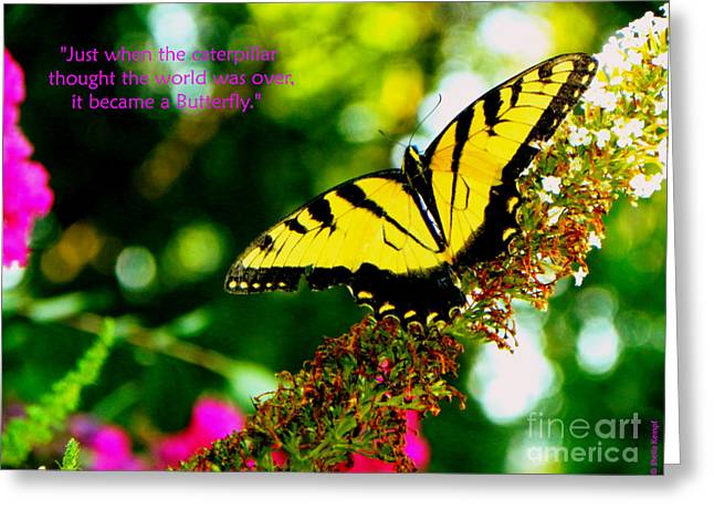 Always Hope - Butterfly Greeting Card by Shelia Kempf