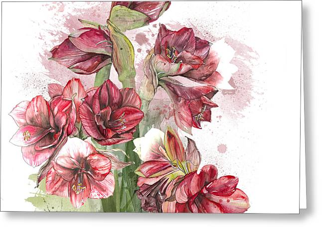 Amaryllis Flowers - 4. - Elena Yakubovich Greeting Card