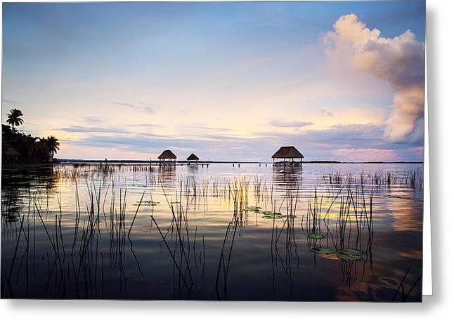 Amazing Bay Sunset Greeting Card