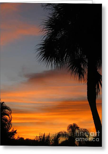 Amazing Sunrise In Florida Greeting Card