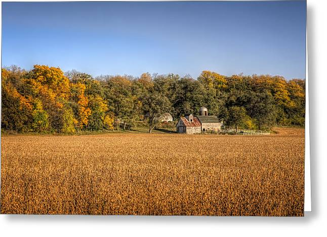 Amber Waves Of Grain Greeting Card by Jeff Burton