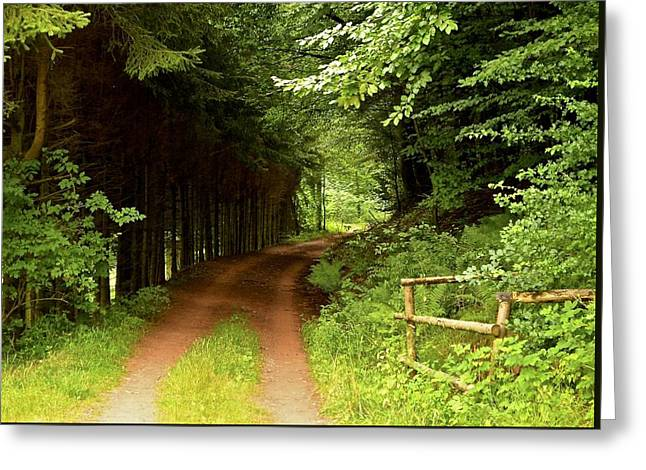Ambler's Way Greeting Card by Marty  Cobcroft
