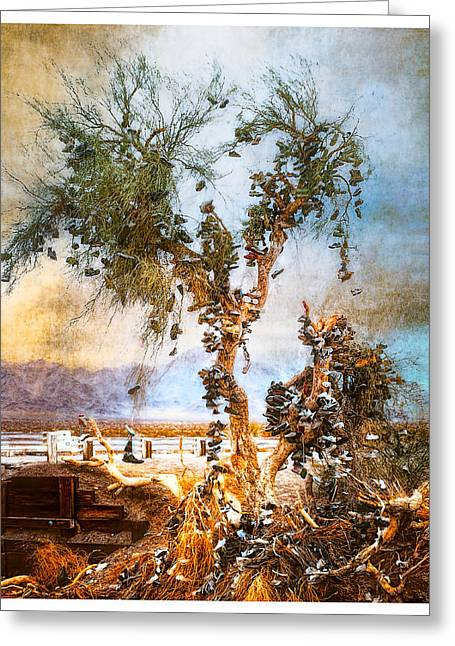 Greeting Card featuring the photograph Amboy Shoe Tree by Steve Benefiel