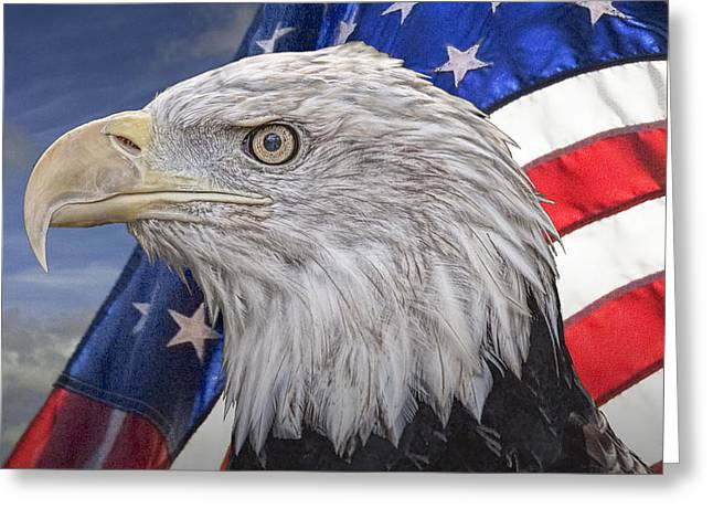 American Bald Eagle With The Stars And Stripes Greeting Card