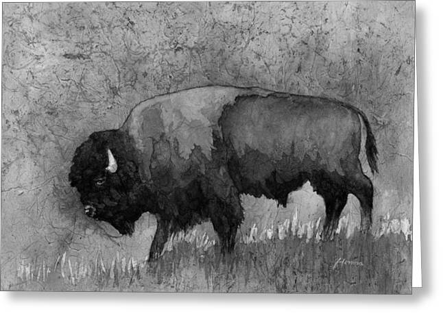 Monochrome American Buffalo 3  Greeting Card by Hailey E Herrera
