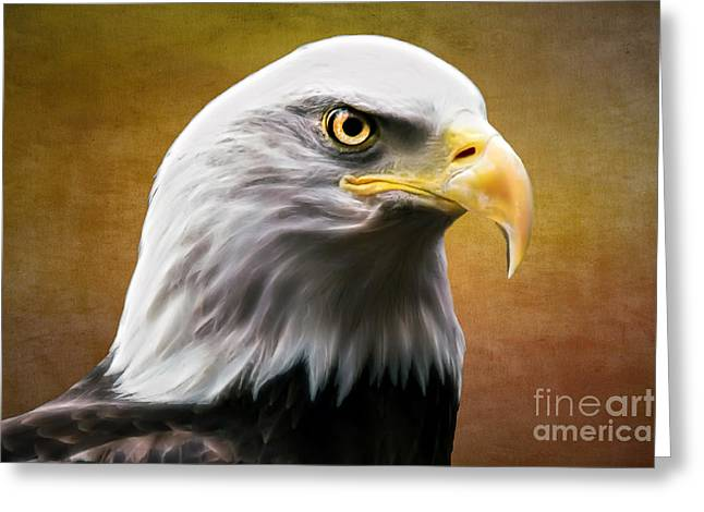 American Eagle Greeting Card by Shannon Rogers