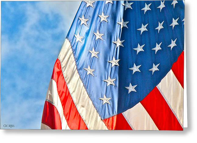 American Flag And All It's Glory Greeting Card by Lorella  Schoales