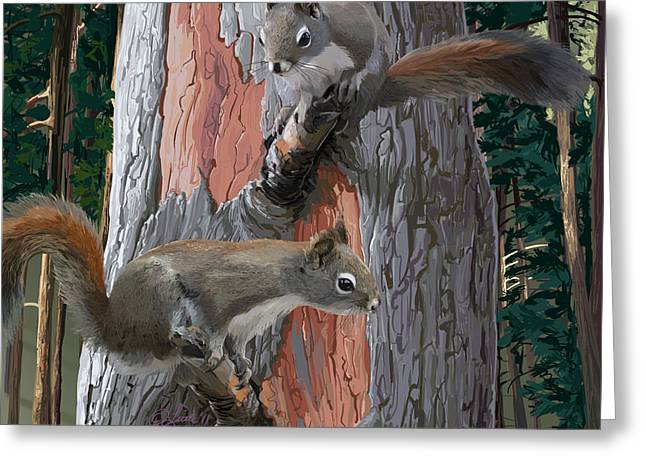 American Red Squirrels Greeting Card